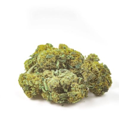 amnesia cbd cannabis light
