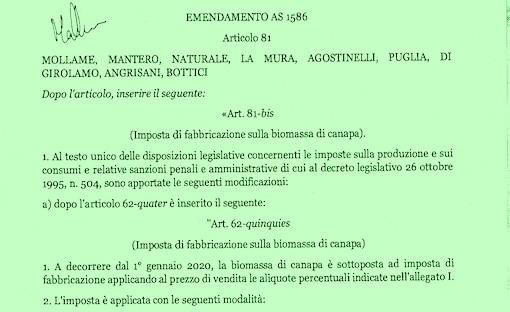 emendamento cannabis