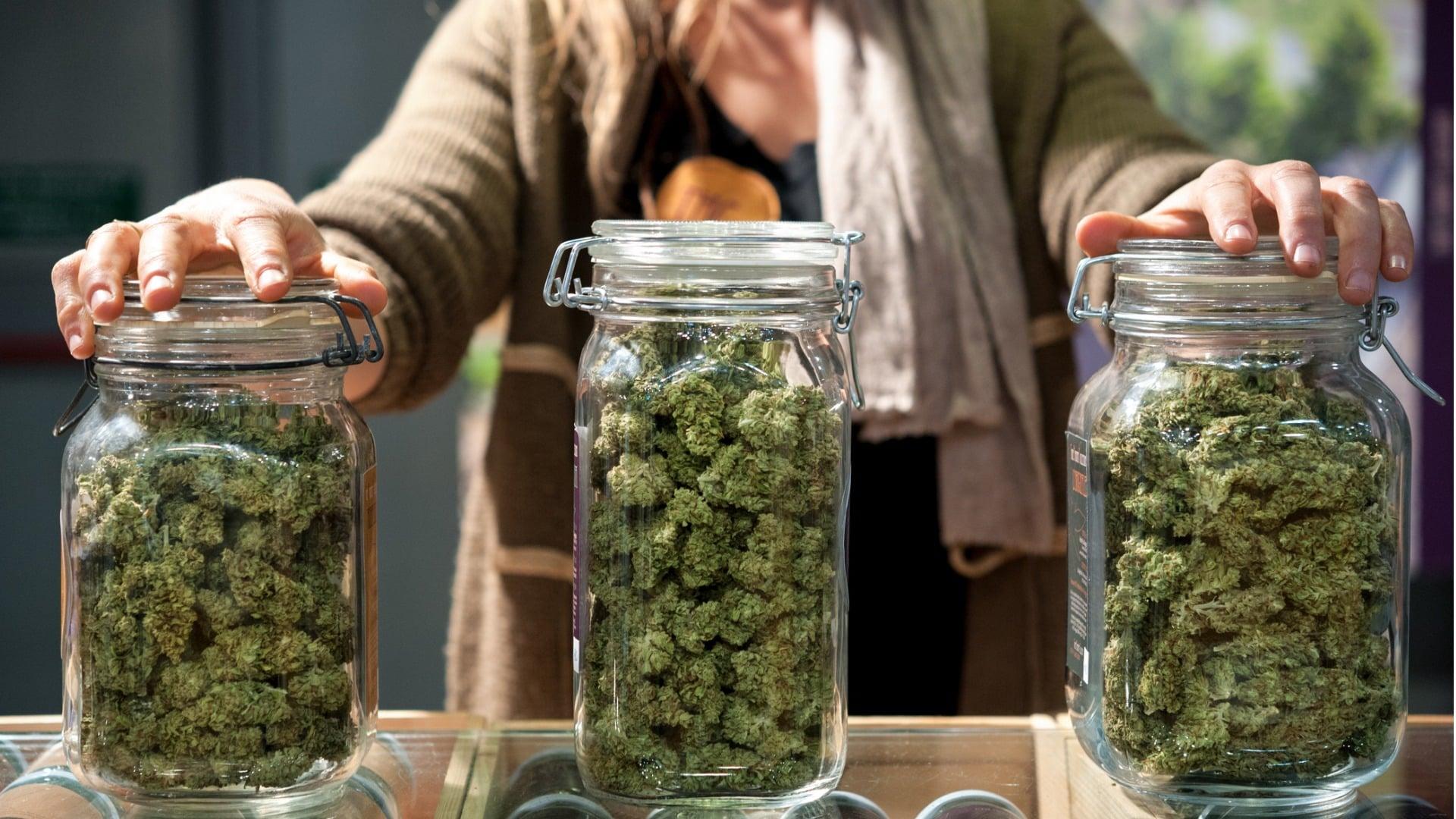 Come Conservare la tua Cannabis Light - CBD Therapy Delivery