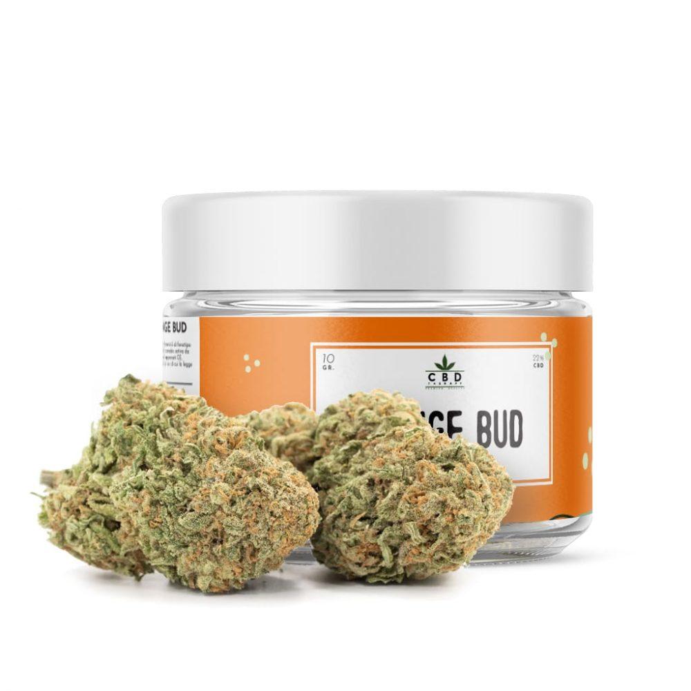 Orange Jar 1