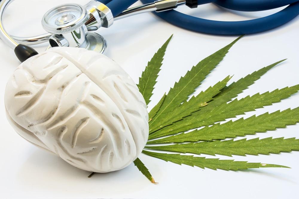 Cannabis Neuroscienza