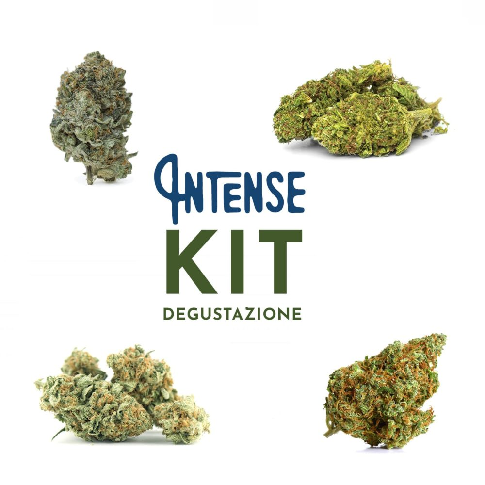kit intenso