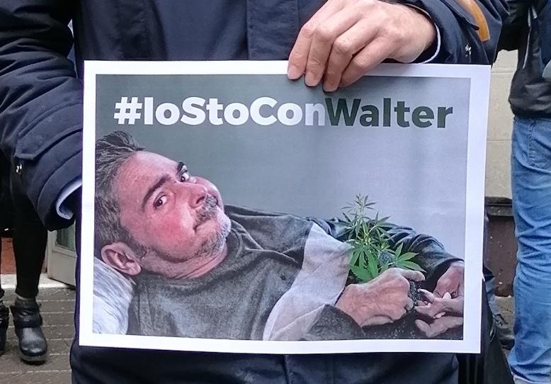 Cannabis - Walter