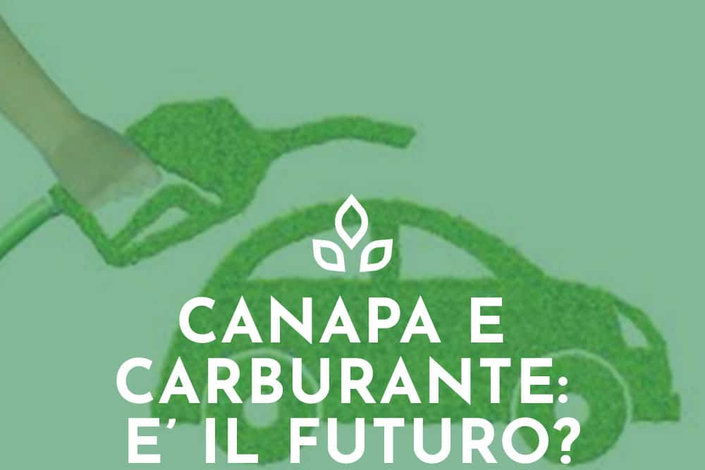CANAPA E CARBURANTE